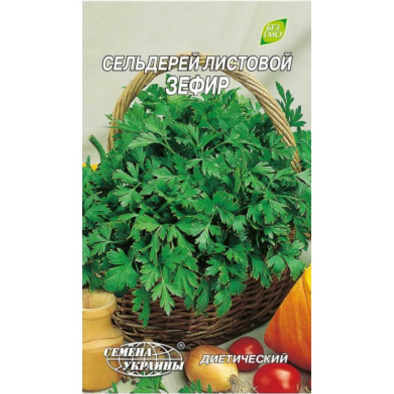 Сельдерей листовой Зефир Семена Украины