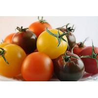 Семена экзотических томатов