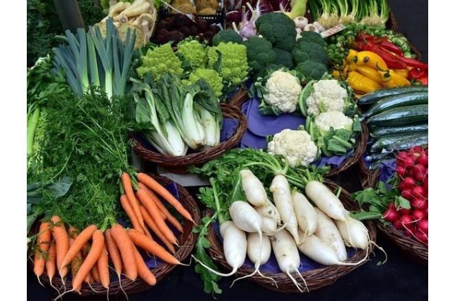Органічне землеробство: з чого почати