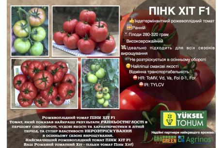 Компания Yuksel любит приятно удивлять семенами высокого качества.