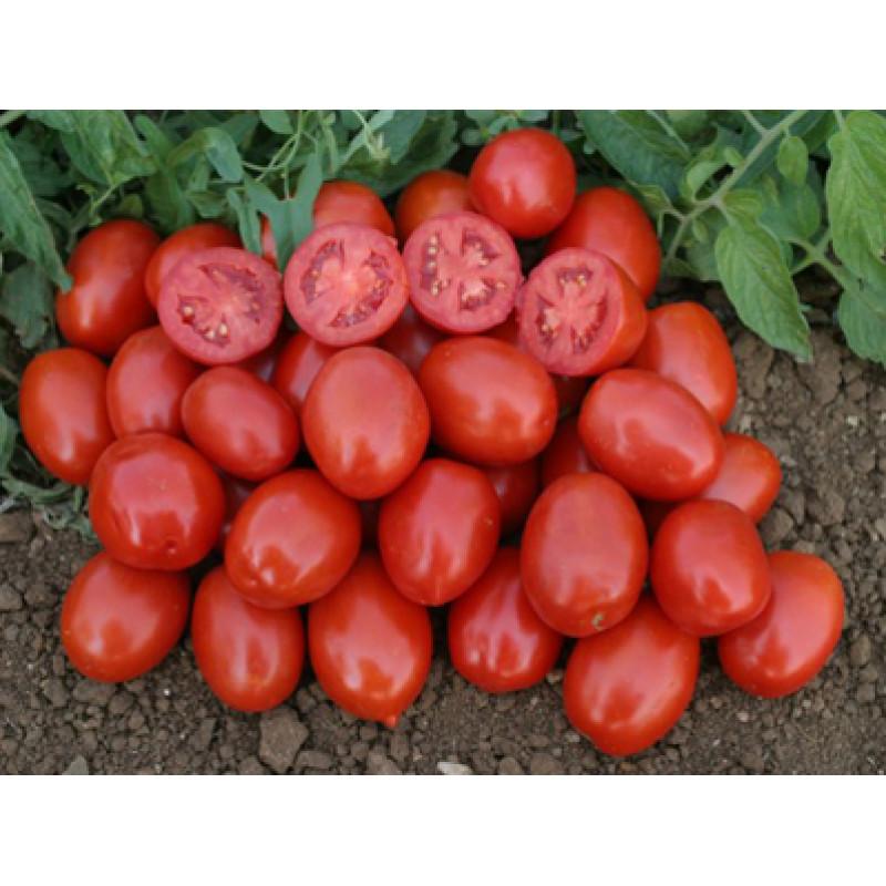 "Томат ""3402 F1"" (Lark Seeds)"