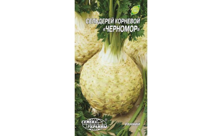Сельдерей Черномор Семена Украины