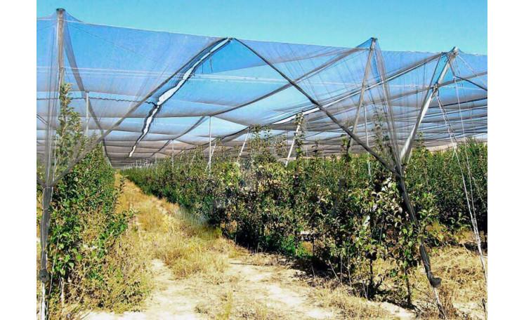 Сетка для защиты от птиц зеленая (Венгрия)