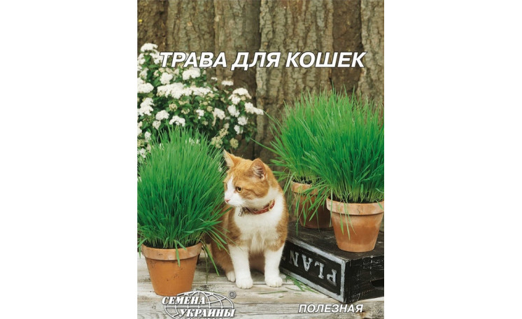 Трава для кошек Семена Украины