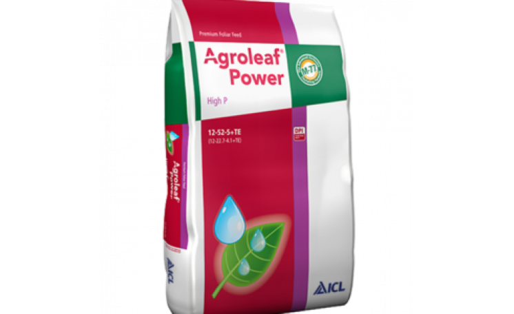 Удобрение Agroleaf Power High P 12-52-5+TE ICL