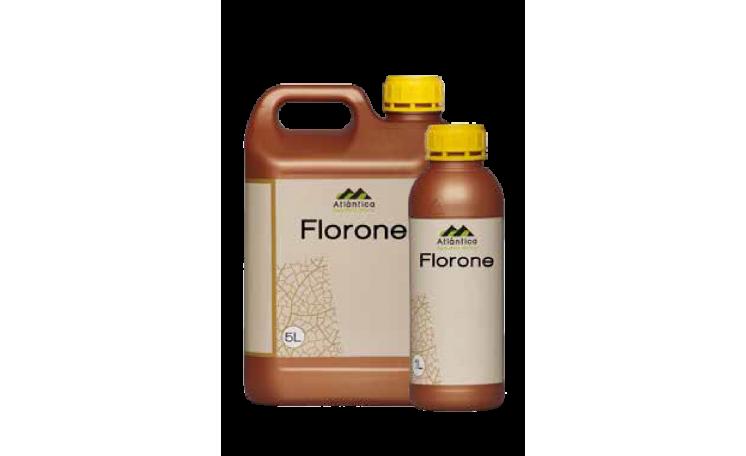 Удобрение Atlantica Флорон Florone