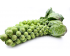 Семена брюссельской капусты