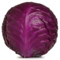 Семена краснокочанной капусты среднего сорта